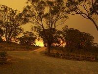 Photos from Burra